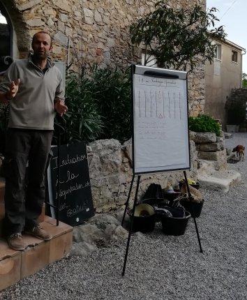 Accueil vendanges Château Bas à Aumelas