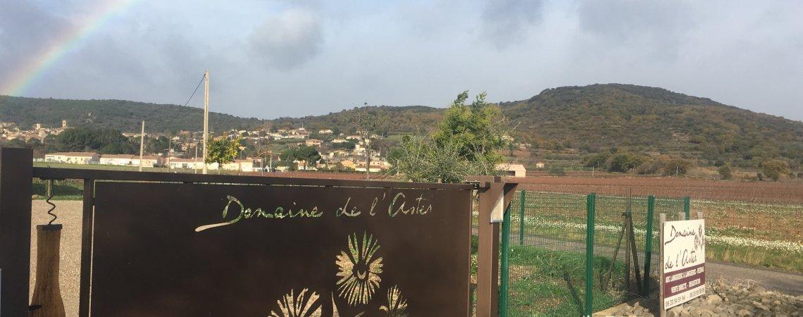 Accueil extérieur Domaine de l'Aster à Péret, Languedoc