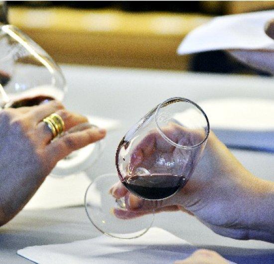 Dégustation de vin rouge – les cépages du Languedoc