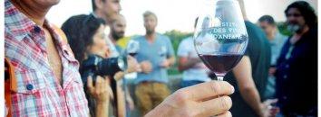 Dégustation de vin rouge du Midi – Languedoc Cœur d'Hérault