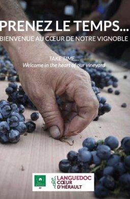 Doc appel Languedoc, Coeur d'Hérault