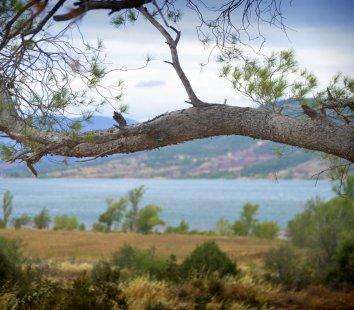 Lac du Salagou dans l'Hérault – oenotourisme en Languedoc sans voiture
