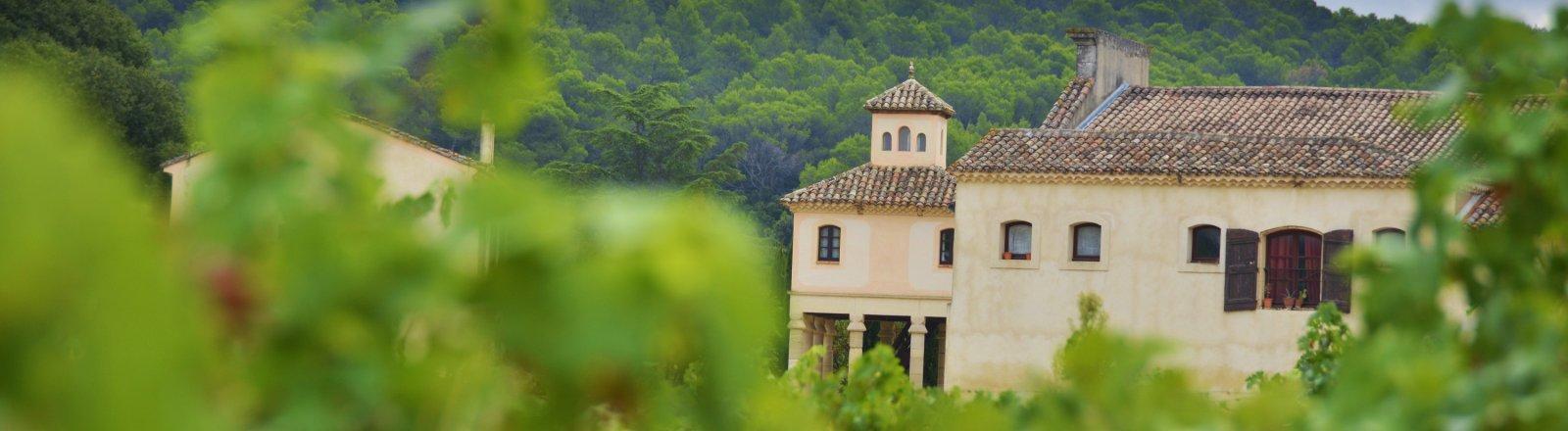 Terrasses du Larzac - Château Capion © Olivier Diaz de Zarate