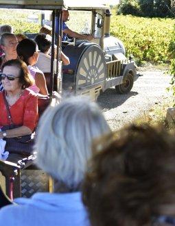 Le Petit Train des Vignes du Domaine Alexandrin