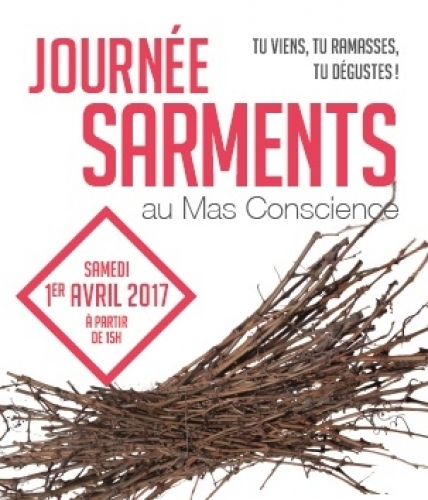 sarments © mas conscience