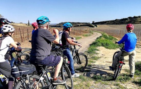 Balade vélo électrique dans le vignoble