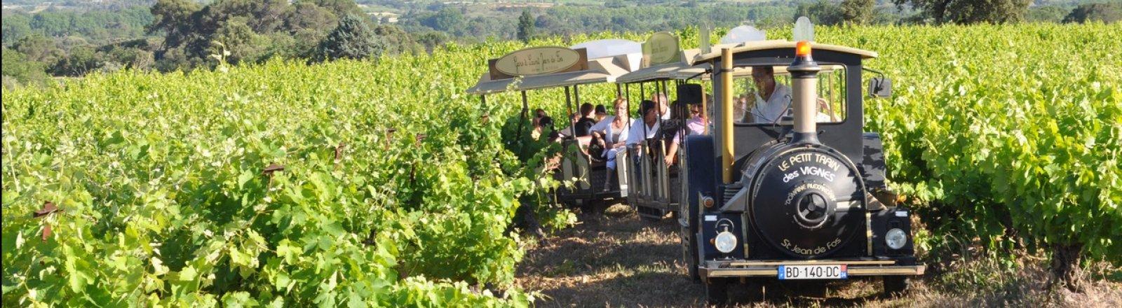 Petit Train des Vignes © Domaine Alexandrin