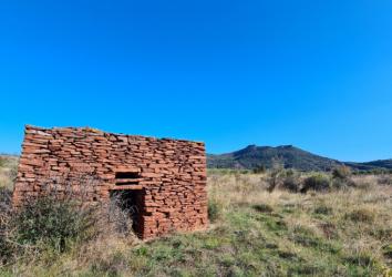 Cabane en pierre sèche à la Capitelle des Salles