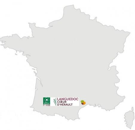 Position Languedoc, Coeur d'Hérault
