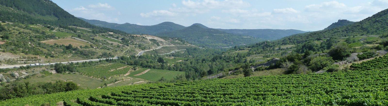 Vue sur la vallée - Pégairolles-de-l'Escalette, Pays Cœur d'Hérault, Languedoc, Occitanie ©