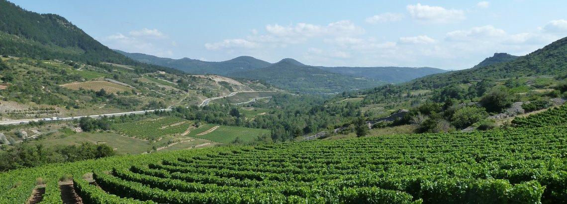 Vue sur la vallée - Pégairolles-de-l'Escalette, Pays Cœur d'Hérault, Languedoc, Occitanie
